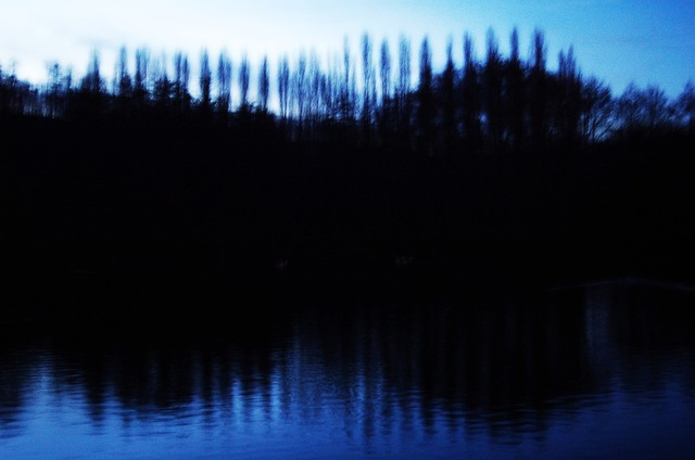 An out-of-focus photo of a line of trees on the brow of a hill and reflected in the water.